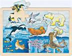 Puzzle 24 pièces les animaux polaires