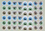 L'univers des yeux