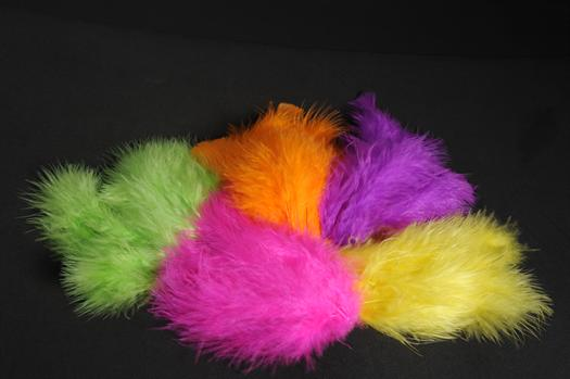 PLUMES FLUO